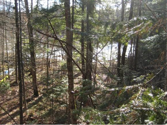 VILLAGE OF MELVIN VILLAGE IN TOWN OF TUFTONBORO NH  LAND  for sale $89,900