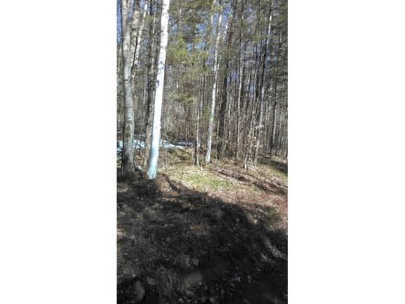 Acworth NH 03601 Land for sale $List Price is $53,000