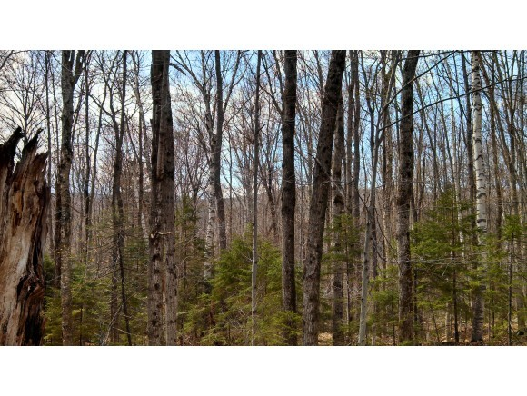 STAMFORD VT LAND  for sale $$9,900 | 1.40 Acres  | Price Per Acre $0