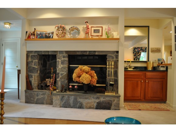 Fireplace and Wet Bar 7047218