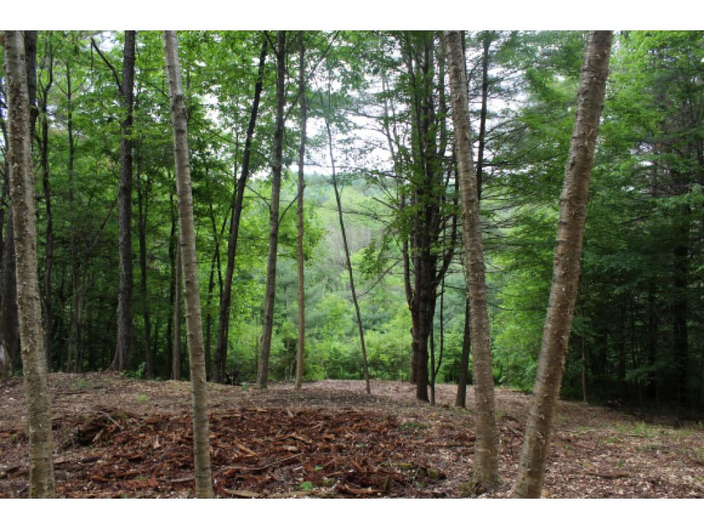 Woodstock VT Land  for sale $List Price is $69,000