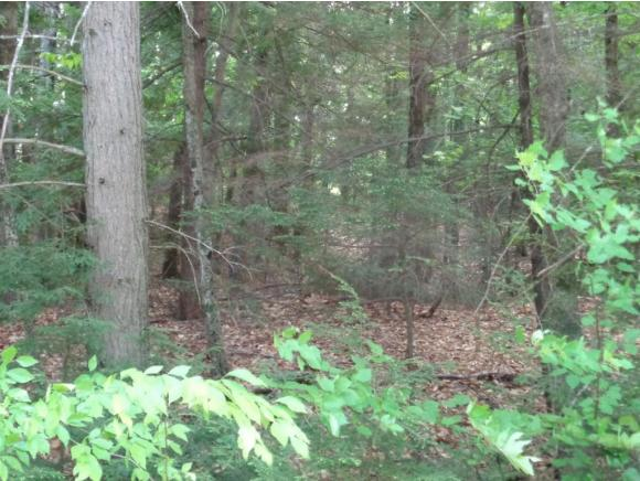 MLS 4425406: 0 Hundred Acre Wood Road, Bristol NH
