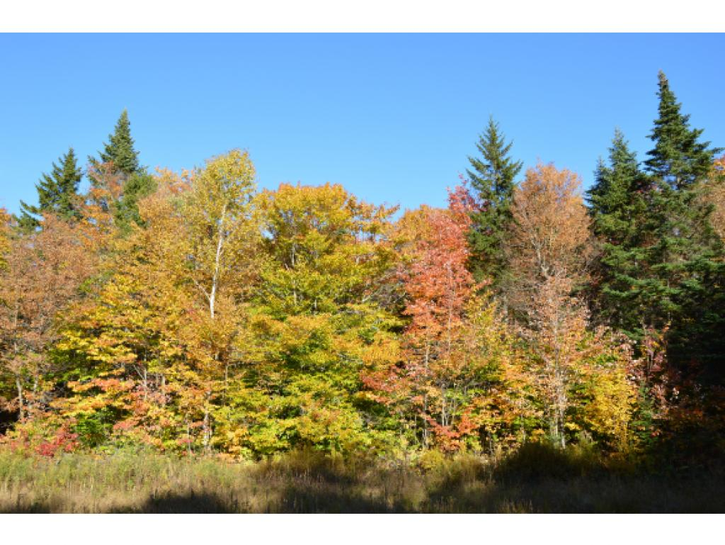 READSBORO VT LAND  for sale $$49,900 | 10.10 Acres  | Price Per Acre $0