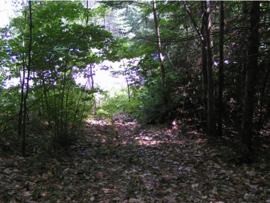 DANBURY NH LAND  for sale $$23,900 | 3.2 Acres  | Price Per Acre $8,093  | Total Lots 2