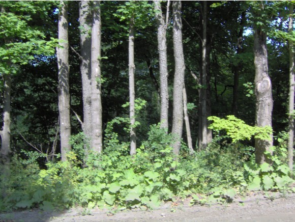 RANDOLPH VT LAND  for sale $$20,000 | 5.03 Acres  | Price Per Acre $3,976