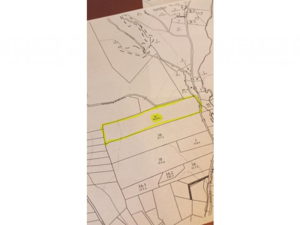 CANAAN NHLAND  for sale $$99,500 | 60.4 Acres  | Price Per Acre $1,804  | Total Lots 2