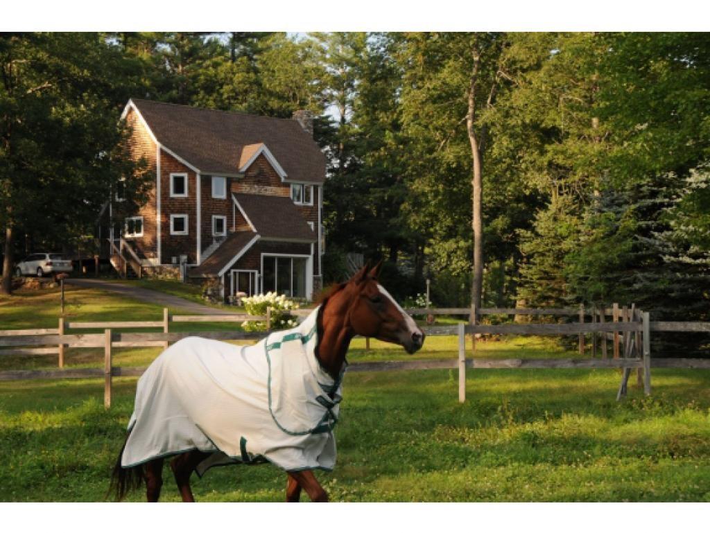 Hill NHHorse Farm | Property