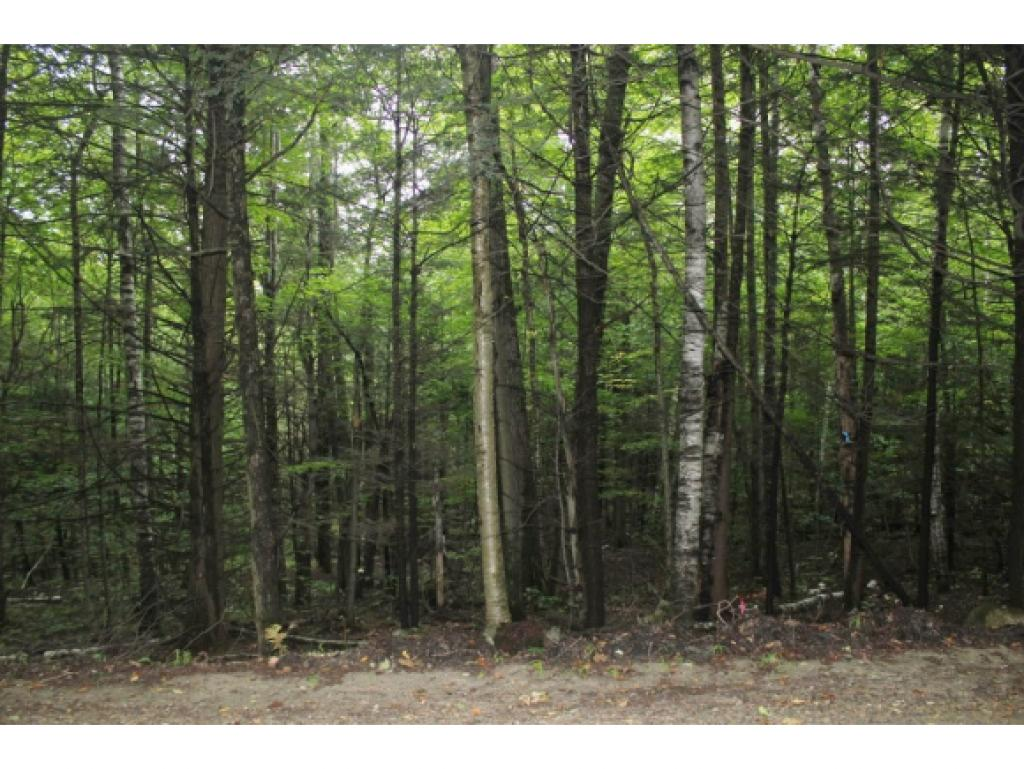 Weathersfield VT Land  for sale $List Price is $54,000