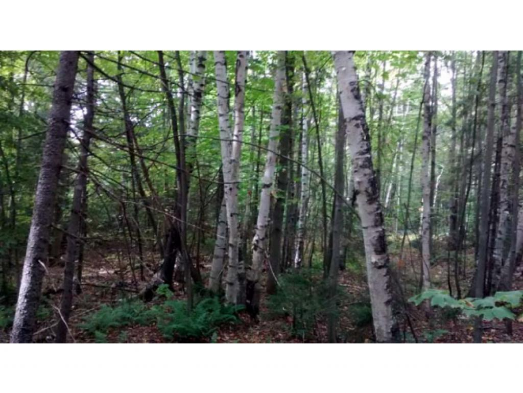 WALLINGFORD VT LAND  for sale $$127,500 | 43.87 Acres  | Price Per Acre $3,168  | Total Lots 2
