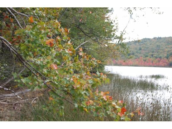 GRANTHAM NH LAND  for sale $$99,000 | 0.59 Acres  | Price Per Acre $167,796  | Total Lots 2