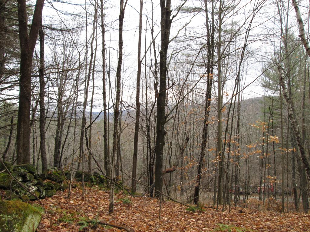Woodstock VT Land  for sale $List Price is $32,000