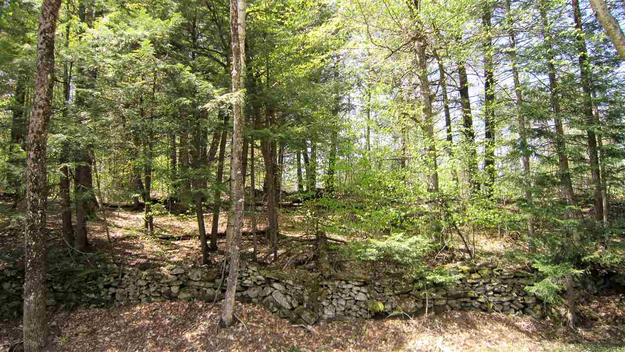 Reading VT Land  for sale $List Price is $59,900