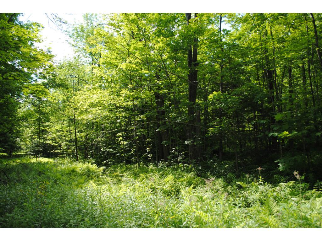 DOVER VTLAND  for sale $$11,000 | 1.03 Acres  | Price Per Acre $0