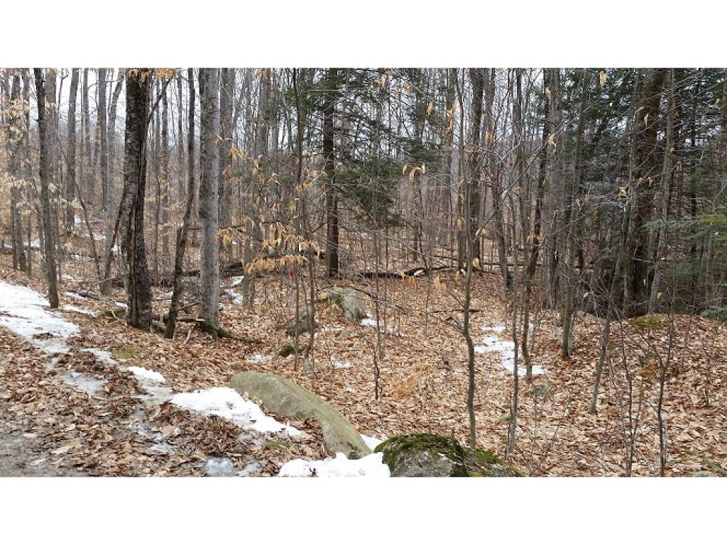 Weathersfield VT Land  for sale $List Price is $19,900