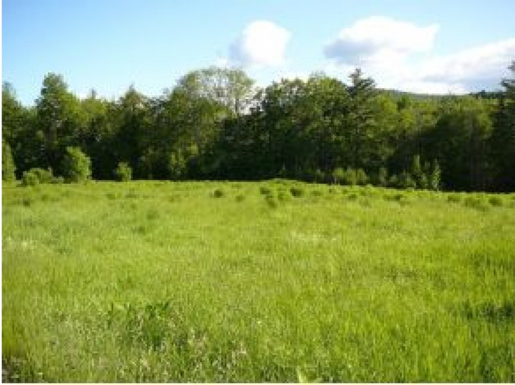 DORCHESTER NH LAND  for sale $$125,000 | 20.35 Acres  | Price Per Acre $6,142  | Total Lots 2