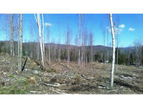GROTON NH LAND  for sale $$44,500 | 4.2 Acres  | Price Per Acre $11,547