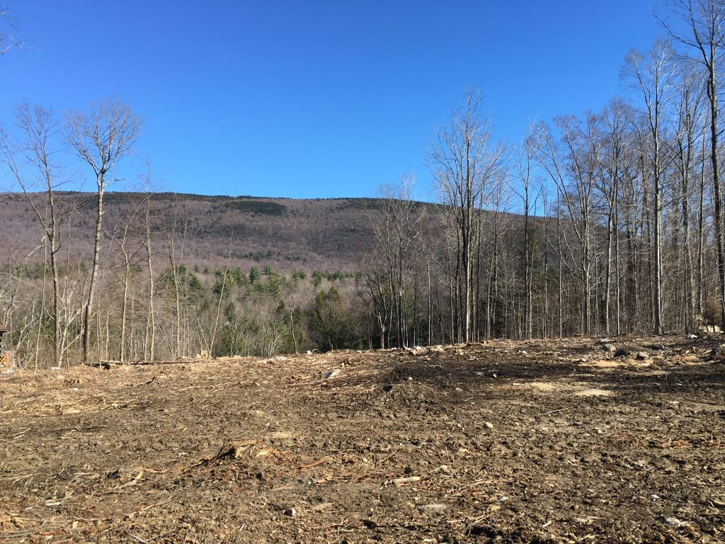 SUNDERLAND VT LAND  for sale $$49,000 | 3.20 Acres  | Price Per Acre $0