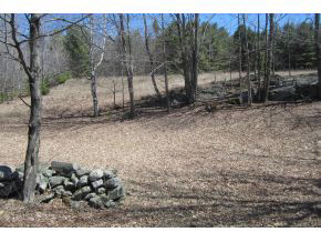 THETFORD VT Land  for sale $$89,000 | 11.1 Acres  | Price Per Acre $8,738