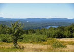 NEWBURY NH LAND  for sale $$495,000 | 12 Acres  | Price Per Acre $45,833  | Total Lots 2