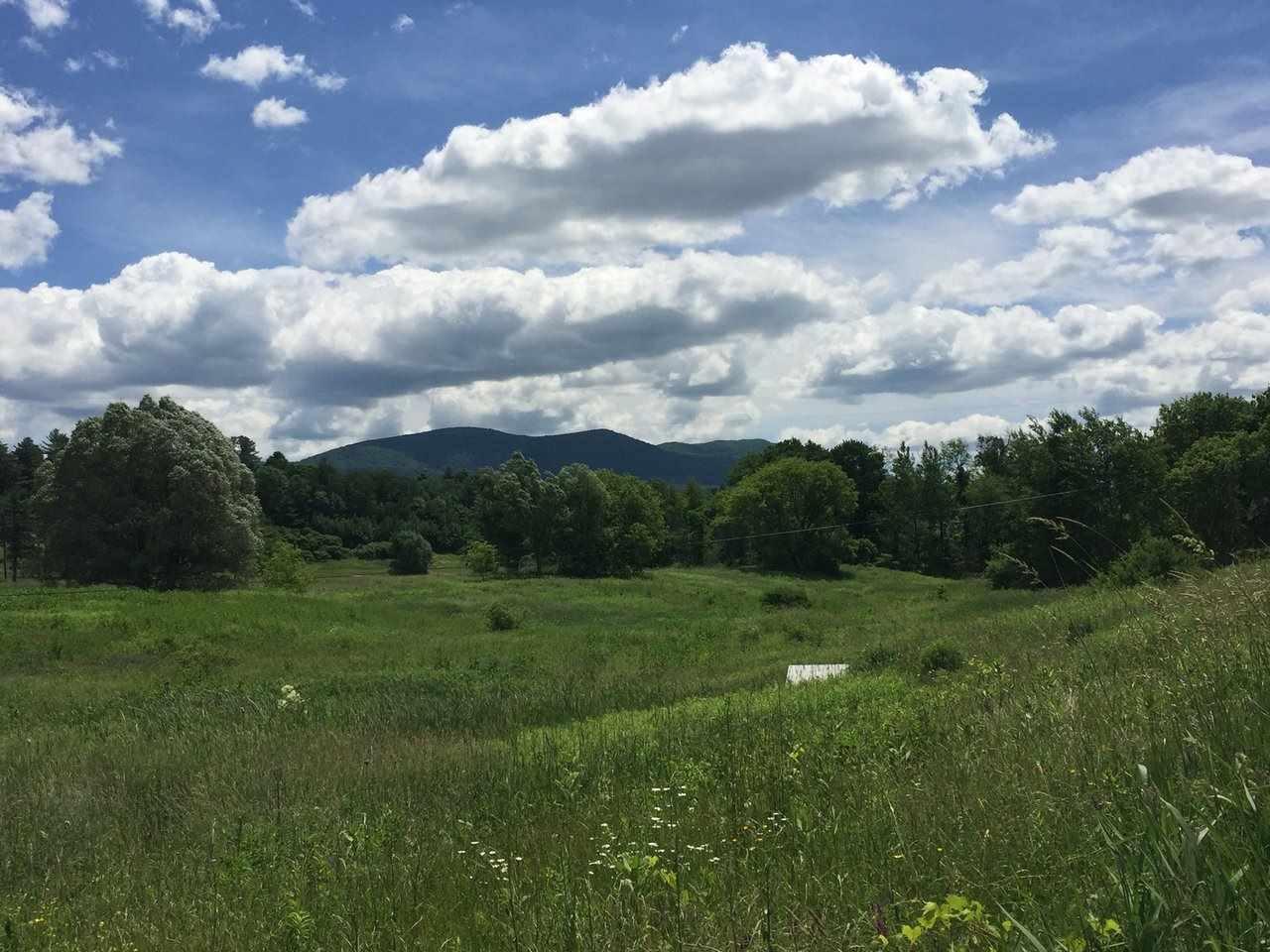 Beautiful mountain views 10146208