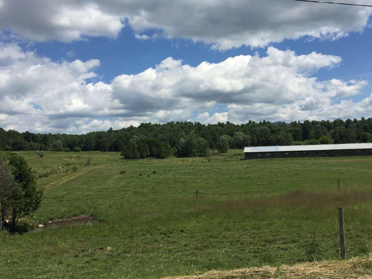 Pasture & Dairy Barn 10146234