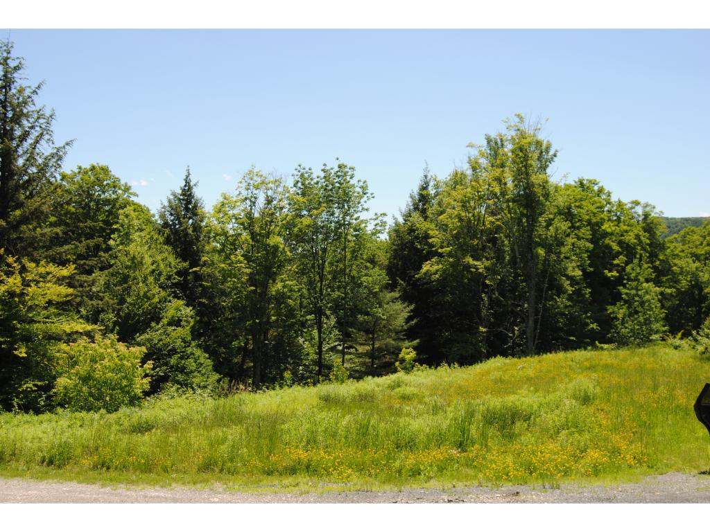 HARTFORD VT LAND  for sale $$50,000 | 20 Acres  | Price Per Acre $3,500