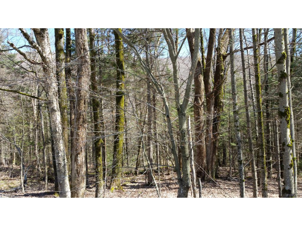 STAMFORD VT LAND  for sale $$13,900 | 4.30 Acres  | Price Per Acre $0