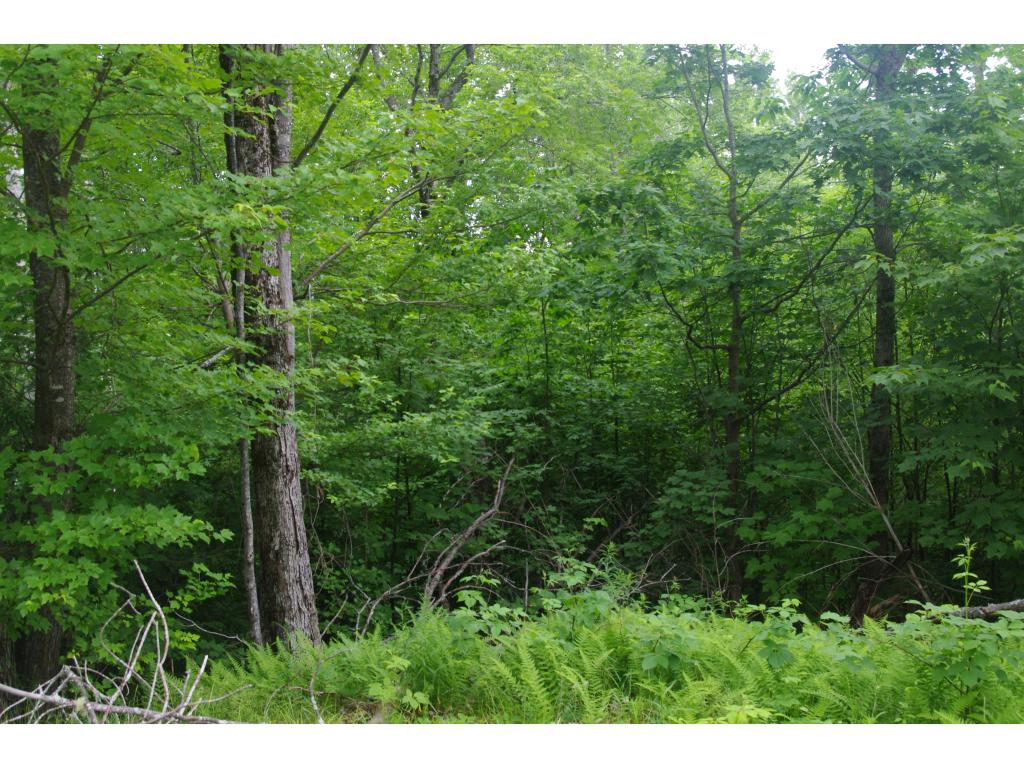 Lempster NH 03605 Land for sale $List Price is $19,000
