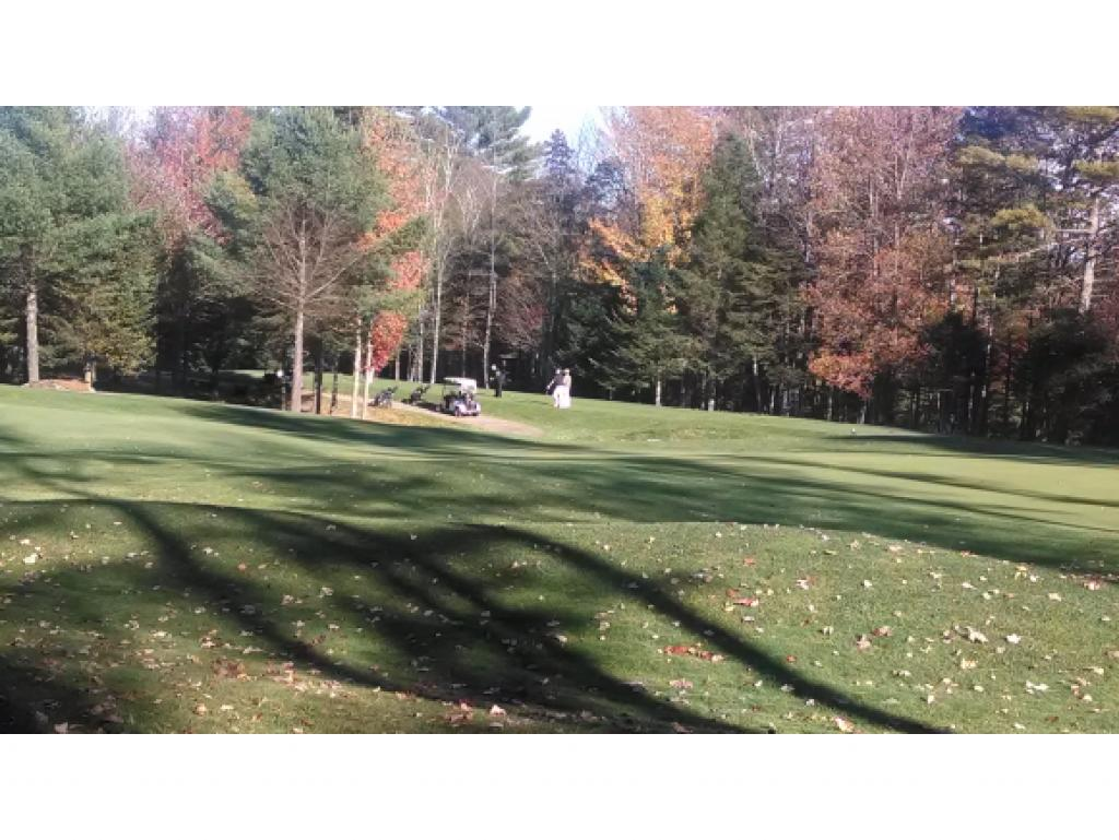 Village of Eastman in Town of Grantham NH  03753Land  for sale $List Price is $72,000
