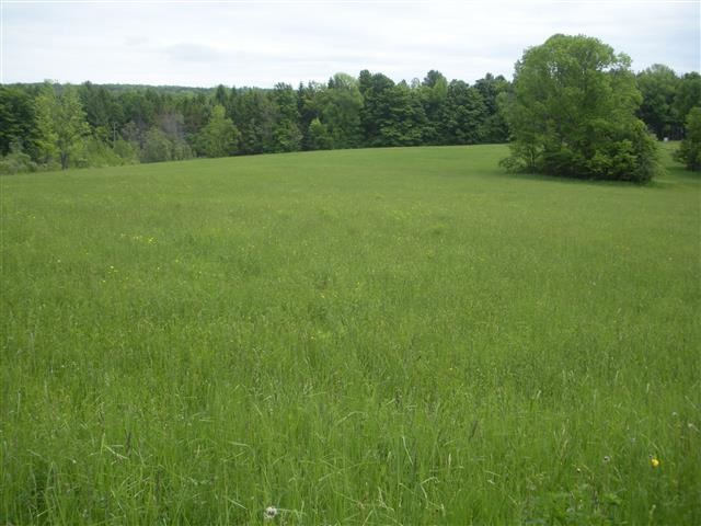 BARNARD VT LAND  for sale $$300,000 | 12.65 Acres  | Price Per Acre $0