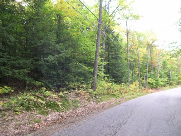 ALEXANDRIA NH Land / Acres for sale