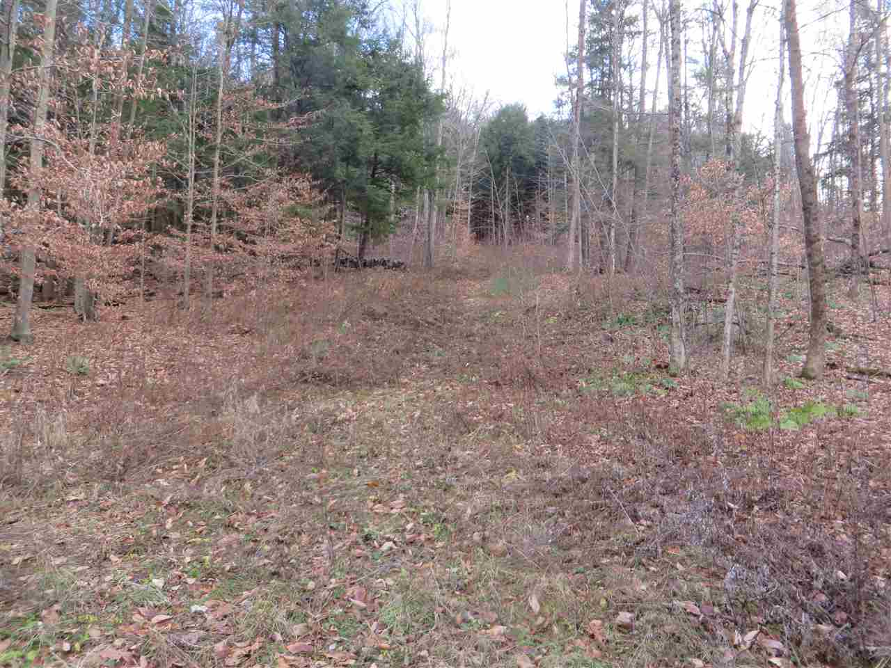 Springfield VT Land  for sale $List Price is $65,000