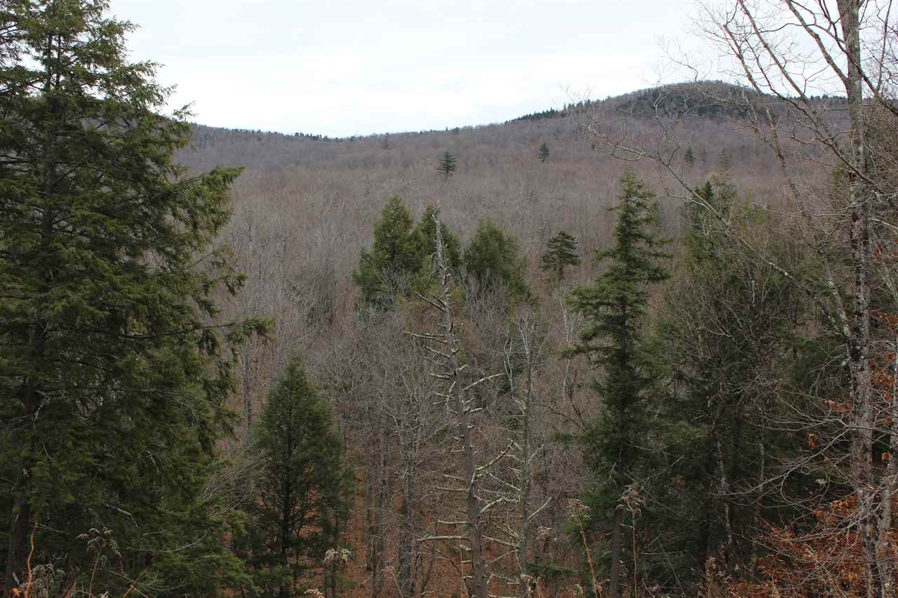 Woodstock VT Land  for sale $List Price is $39,000