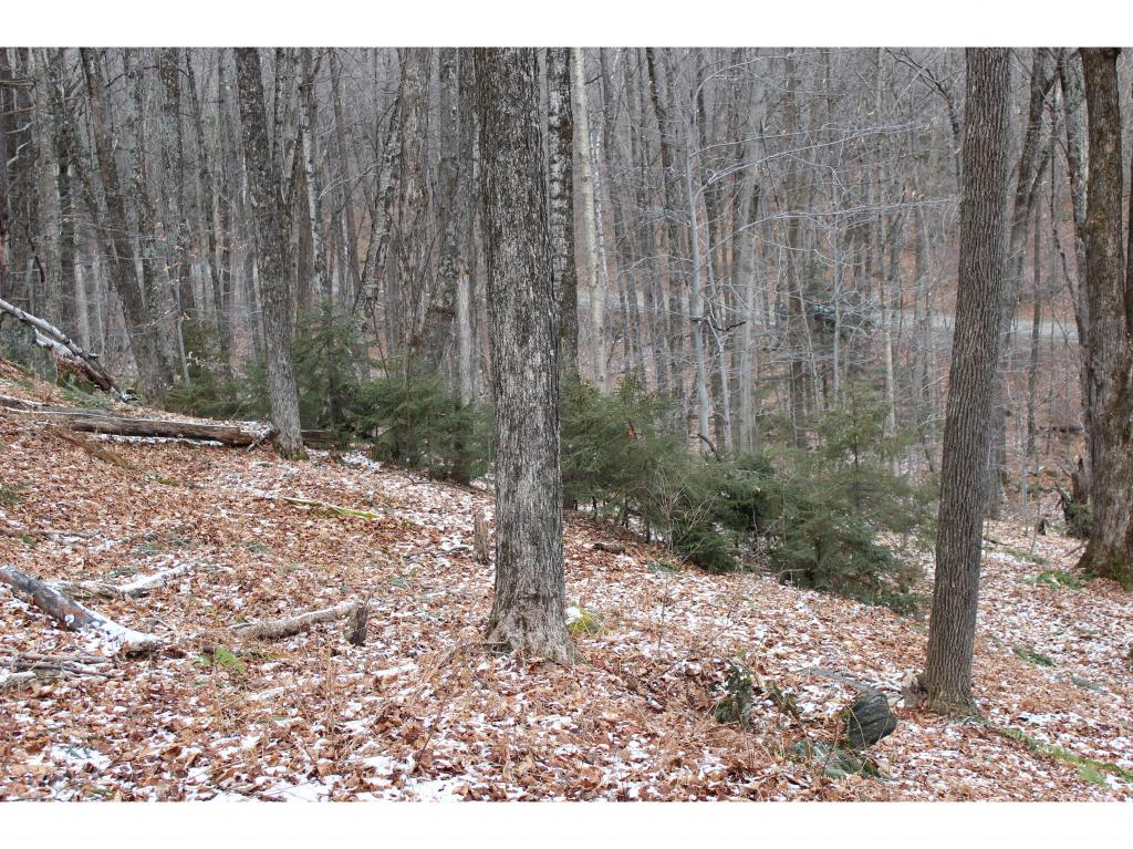 BARNARD VT LAND  for sale $$49,000 | 5.33 Acres  | Price Per Acre $0