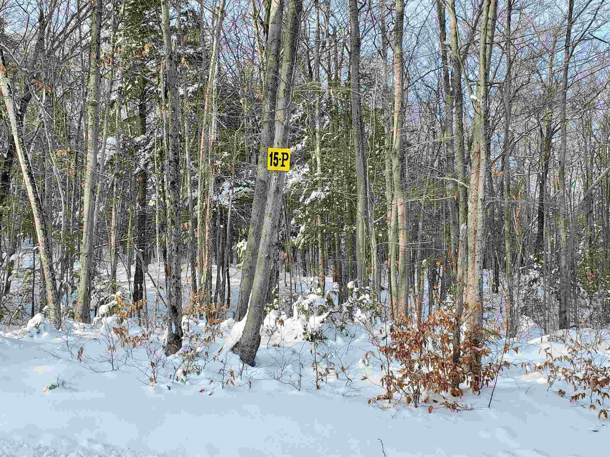 Property for sale at 15 P Buzzell Ridge Road, Sandwich,  New Hampshire 03227