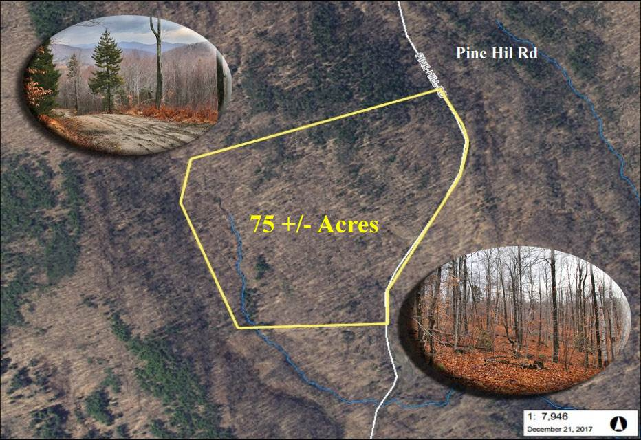 Plymouth VT Land  for sale $List Price is $74,900