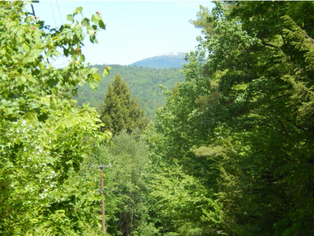 GRAFTON NH LAND  for sale $$79,900 | 18.88 Acres  | Price Per Acre $0  | Total Lots 2