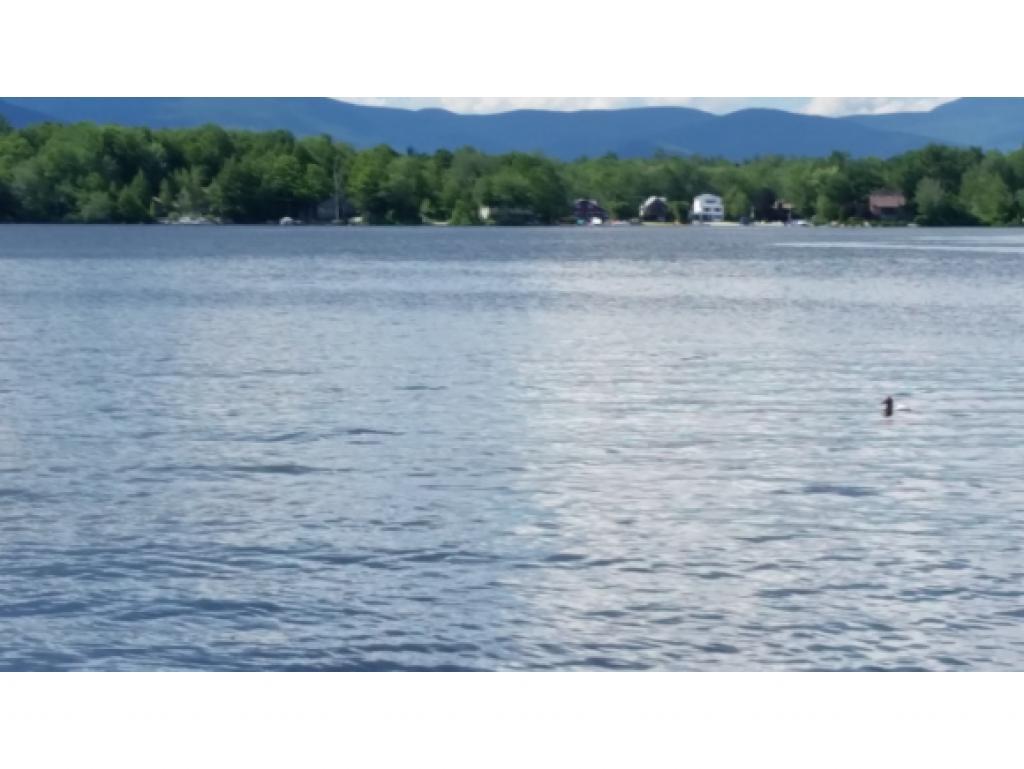 MOULTONBOROUGH NH LAND  for sale $139,000