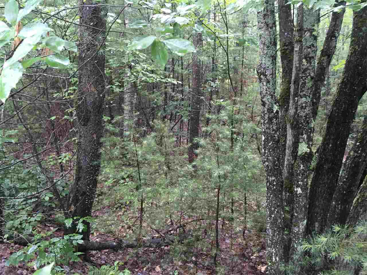 VILLAGE OF EAST WAKEFIELD IN TOWN OF WAKEFIELD NHLand / Acres for sale