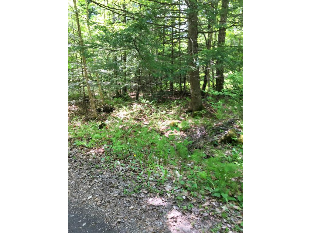 Weathersfield VT Land  for sale $List Price is $49,900