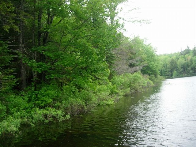 GRAFTON NH LAND  for sale $$79,900 | 0.79 Acres  | Price Per Acre $0