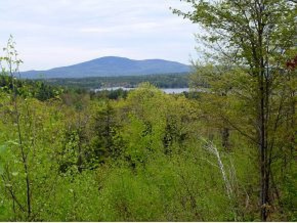 SPRINGFIELD NH LAND  for sale $$104,500 | 5.17 Acres  | Price Per Acre $0