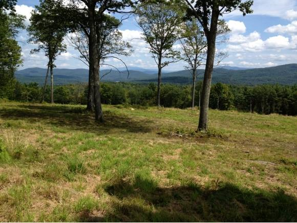 THETFORD VT LAND  for sale $$140,000 | 29.5 Acres  | Price Per Acre $0  | Total Lots 2