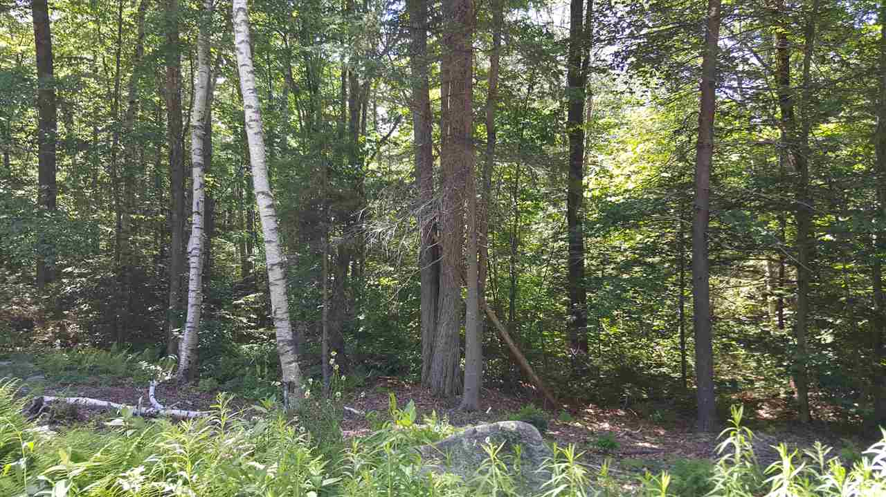 Lempster NH 03605Land for sale $List Price is $15,500