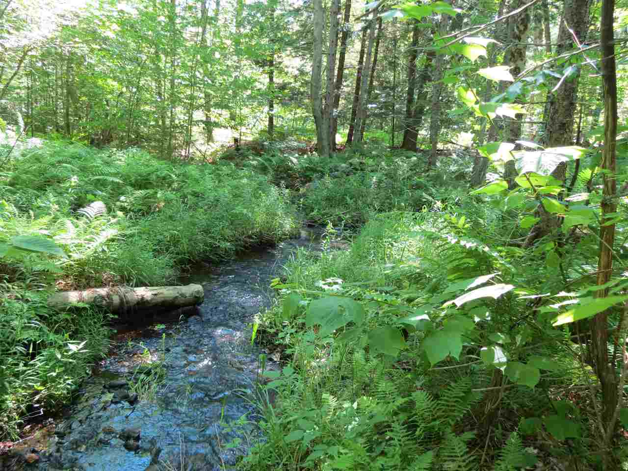 Cavendish VT Land  for sale $List Price is $39,000