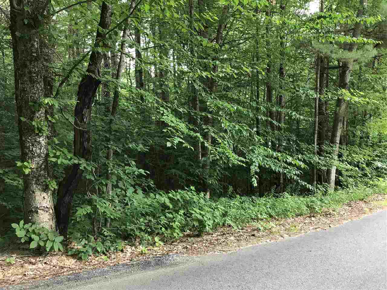 BROOKFIELD NH Land / Acres for sale