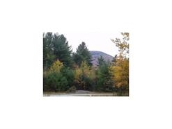 Cavendish VT Land  for sale $List Price is $15,000
