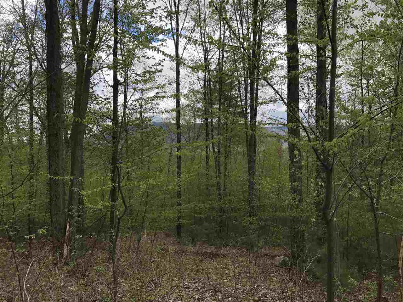 WALLINGFORD VTLAND  for sale $$48,000 | 4.95 Acres  | Price Per Acre $0  | Total Lots 2