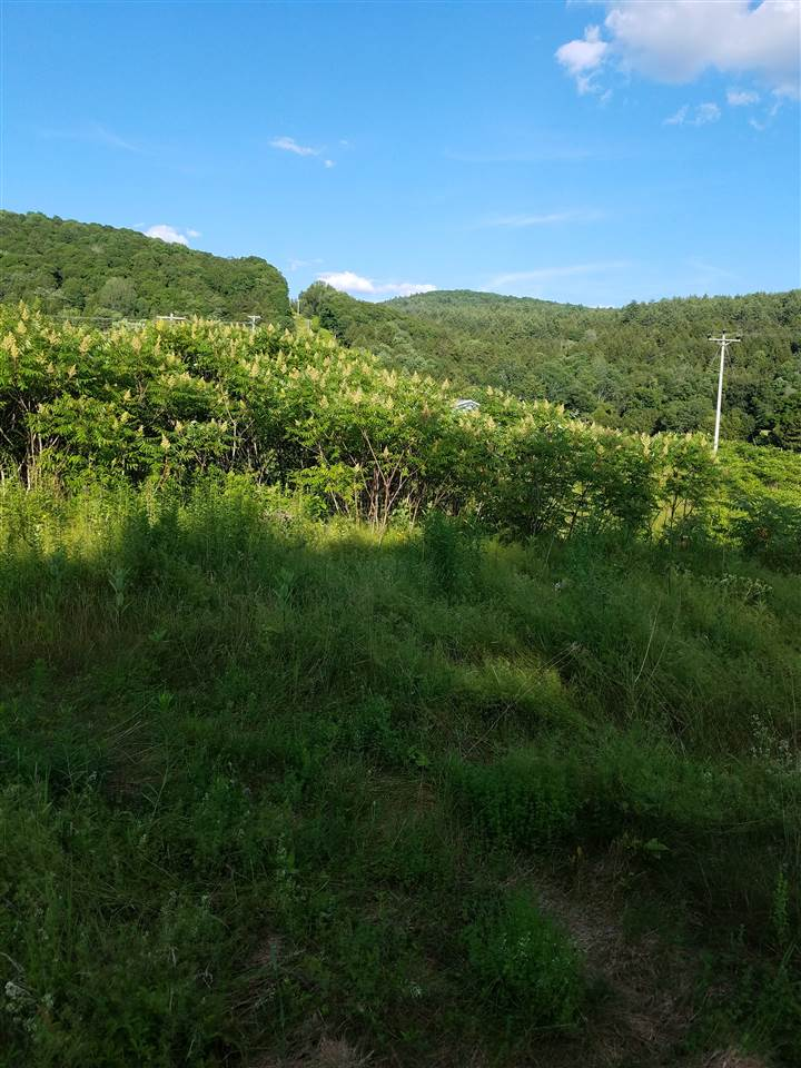 RANDOLPH VT LAND  for sale $$12,500 | 1 Acres  | Price Per Acre $0