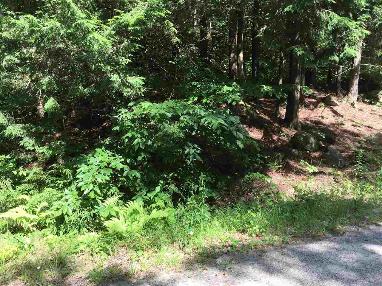 Lempster NH 03605 Land  for sale $List Price is $9,900